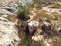 Mġarr cart ruts 20.jpg