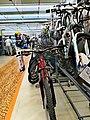MTB Decathlon 02.jpg