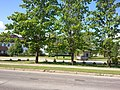 MT foto - panoramio (21).jpg