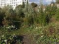Maastricht 2012 Park op voormalig Sphinx terrein 1.JPG
