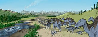 Two Medicine Formation - Reconstruction image of a herd of Maiasaura walking along a creek-bed in Two Medicine Formation. Shown are the region's typical conifer, fern and horsetail vegetation, and a volcano erupting in the distance is evocative of the ash layers found in the Two Medicine Formation.