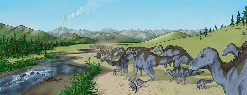 Illustration of a herd of Maiasaura walking along a creekbed, as found in the semi-arid Two Medicine Formation fossil bed.This region was characterized by volcanic ash layers and conifer, fern and horsetail vegetation.