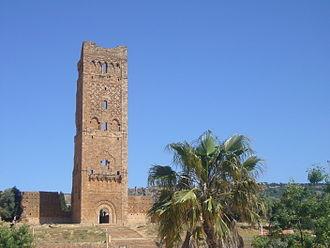 Algeria - Mansourah mosque, Tlemcen