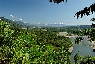 Manú National Park - River in Manú National Park