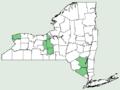 Marsilea quadrifolia NY-dist-map.png