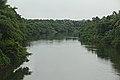 Meenachil River @ Thiruvanchoor.jpg