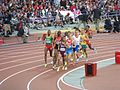 Men's 1500 metres heats.jpg
