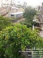 Metro View-Andheri West-DN Nagar.jpg