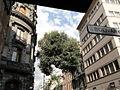 Mexico edificios de la ciudad.JPG