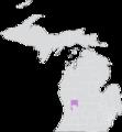 Michigan Senate District 28 (2010).png