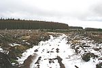 Millstone Hill This shot captures perfectly the gloom which presaged a mercifully brief snow shower on this exposed ground.