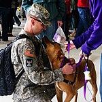 Minnesota National Guard (16700210464).jpg