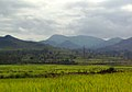 Monsoon time view at Araku Valley.jpg