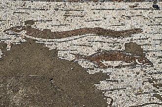 Roman ruins of Pisões - Image: Mosaic floor depicting a fish and a eel, Roman Villa of Pisões, Lusitania, Portugal (13029506305)