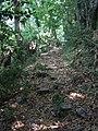 Mount Athos- ancient plastered path 1.jpg