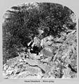 Mount Monadnock in Cheshire County, New Hampshire (4606477557).jpg
