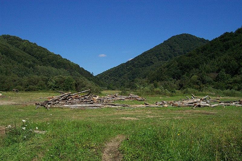 File:NP Poloniny, v pohledu z údolí.jpg