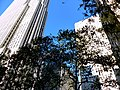 NYC - Rockefeller Center - panoramio (1).jpg