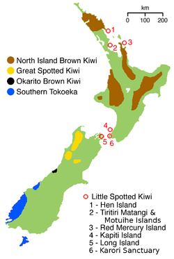 NZ-kiwimap 5 species.png