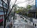 Nambu-Ensen road , Musashi-Kosugi - panoramio.jpg