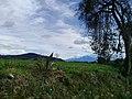Nanacamilpa Forest, Tlaxcala, Mexico 03.jpg