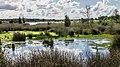 Nationaal Park Drents-Friese Wold. Locatie Fochteloërveen 01-09-2020. (actm.) 02.jpg