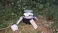 Near Las Descargues and Gorses - Twin Actinic Midi Robinson (27828978870).jpg