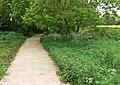 New path across the Aylestone Meadows - geograph.org.uk - 815379.jpg