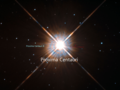 New shot of Proxima Centauri, our nearest neighbour.png