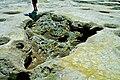 Nisyros vulcan mofetta 2.jpg