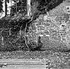 noordmuur met doorgang van 2 meter in tufsteen en een later poortje in baksteen. - baflo - 20027380 - rce