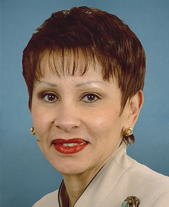 Nydia Velázquez - Congresswoman Velázquez's official congressional portrait, 113th Congress.