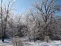 Oakville, MO 63129, USA - panoramio.jpg