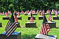 Numerous simple headstones, on top of which are soldiers' names. Each headstone is graced by an American flag.
