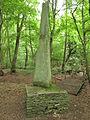 Obelisk Büchelberg.JPG