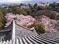 Odawara Castle-1.jpg