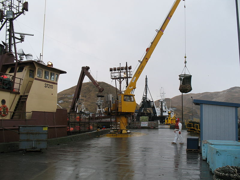 File:Offloading crab in Dutch Harbor.jpg