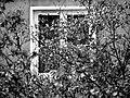 Okno - panoramio (1).jpg