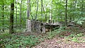 Old foundation along abandoned road - panoramio.jpg