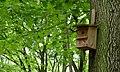 Oldenburg (Niedersachsen) , Vogel-Nistkasten mit Hausnummer (33751111).jpg