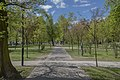 Oleśnica - Park Klonowy.jpg