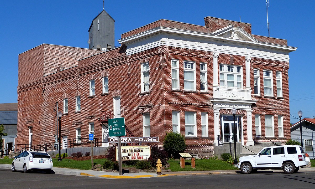 City Of Albany >> Elgin Opera House - Wikipedia