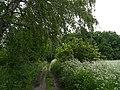 Opolskie krajobrazy - pod Górą Św.Anny - panoramio.jpg