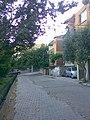 Orta sokak - panoramio.jpg
