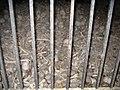 Ossuarie at Chapelle Sanit-Sebastien, Dambach-la-Ville - panoramio.jpg