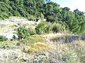 Otok Korčula04547.JPG