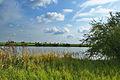 Přírodní památka Nebeský rybník, okres Prostějov (03).jpg