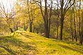 Přírodní památka Ratajské rybníky 07.jpg