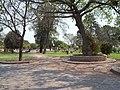 PLAZA - panoramio (1).jpg