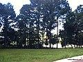 PQ da Cidade - Jundiai - SP - panoramio (12).jpg